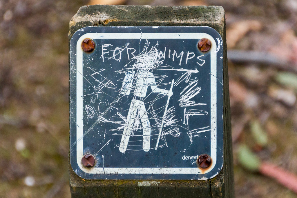 defaced-walking-sign-steiglitz
