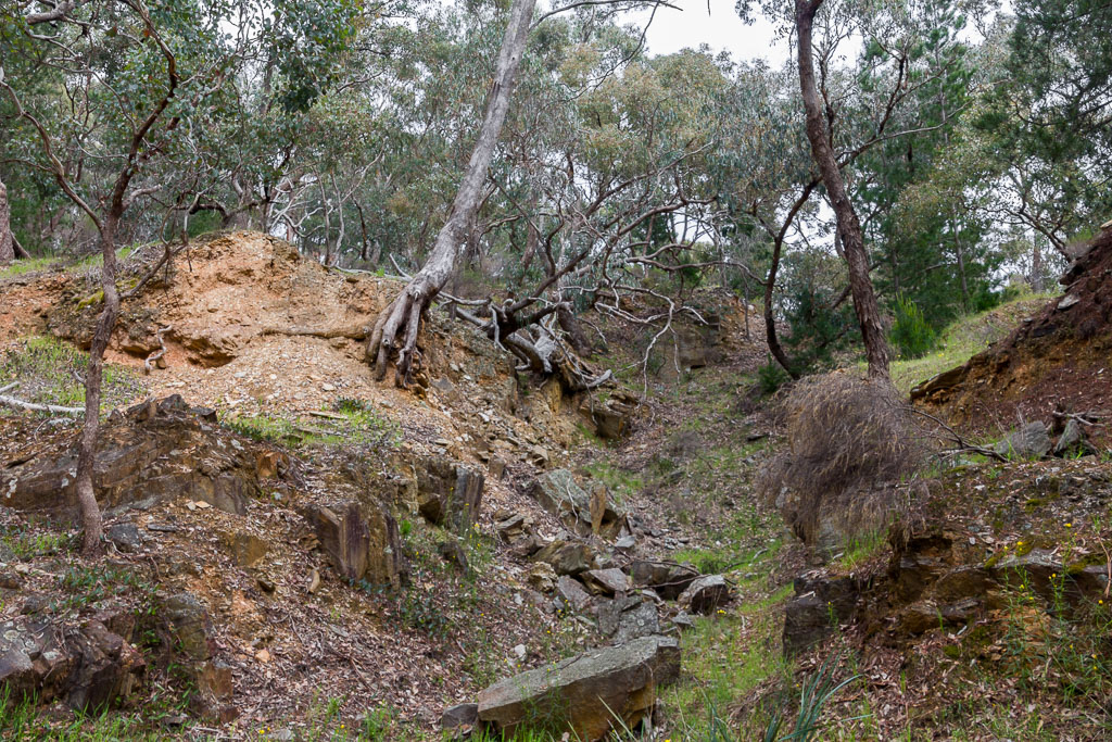 eroded-gully-near-welsh-village-goldfields