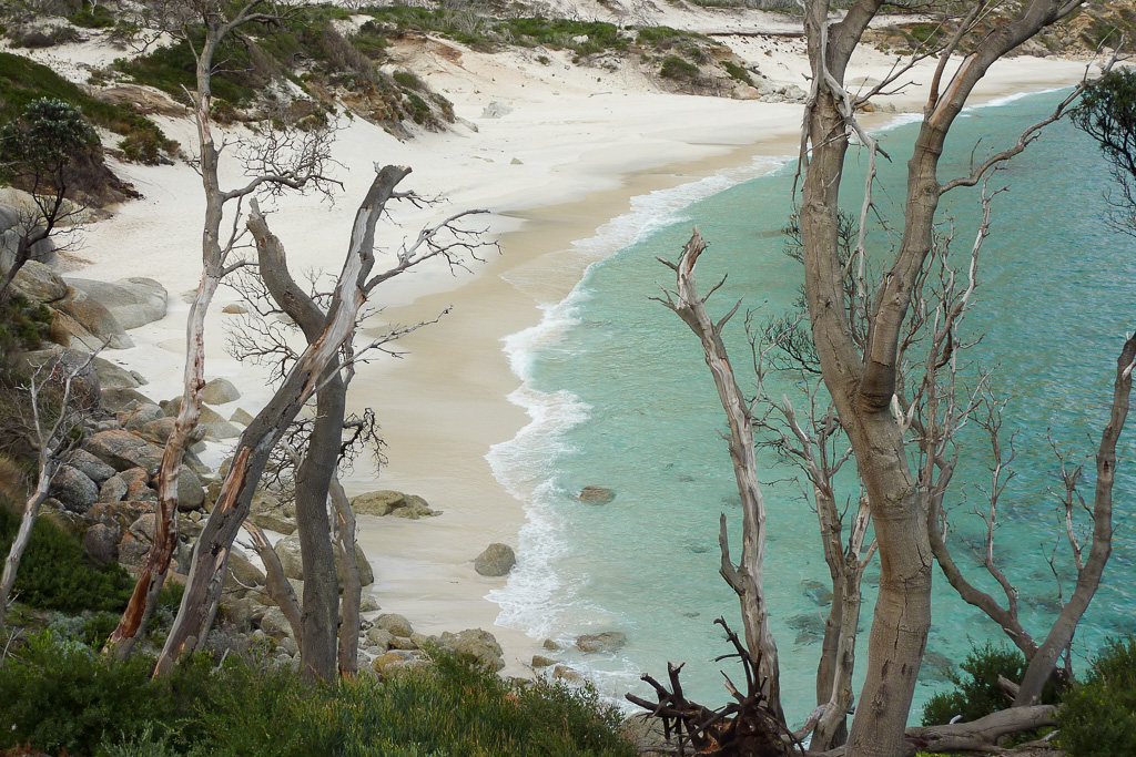 above-little-oberon-bay-wilsons-promontory