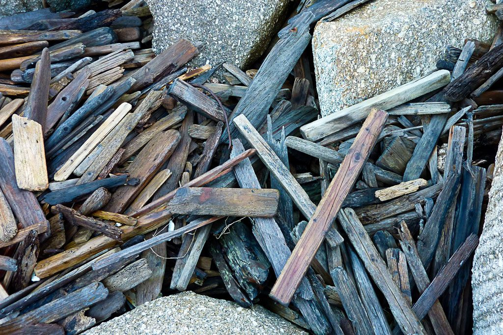 drift-wood-south-point-wilsons-promontory