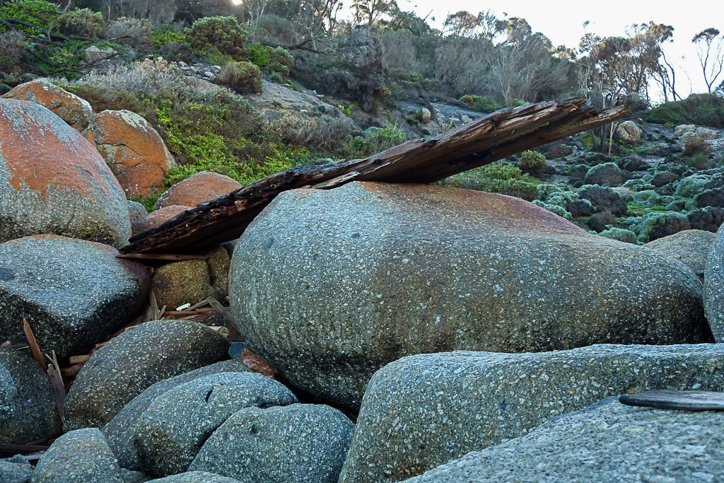 large-drift-wood-south-point-wilsons-promontory