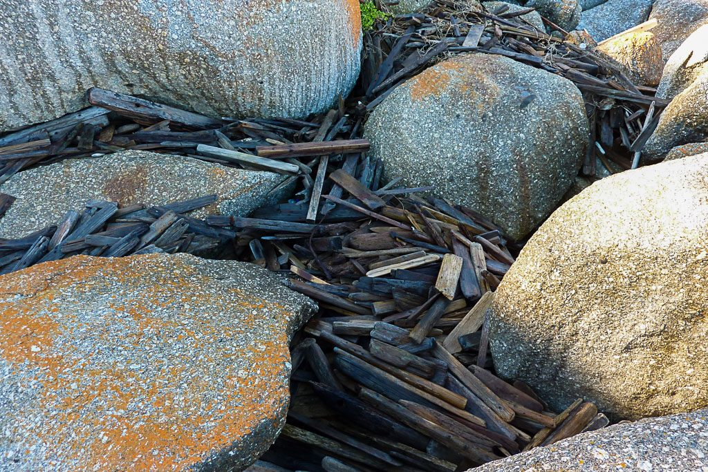 piled-drift-wood-south-point-wilsons-promontory