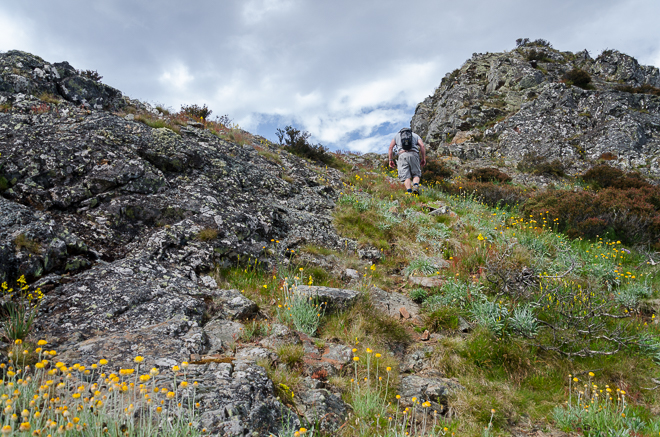 climbing-steep-slope-west-ridge-mount-buller