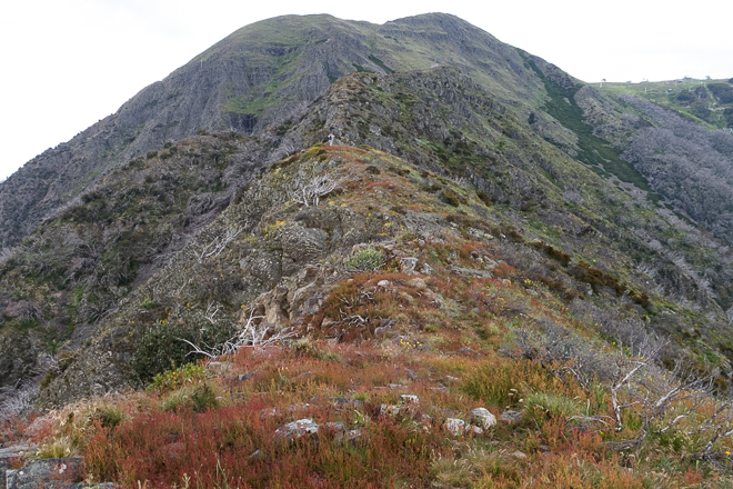 climbing west ridge-mount-buller