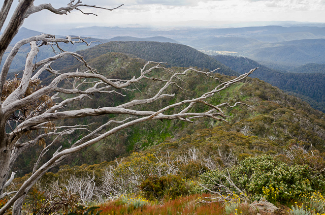 view-from-west-ridge-mount-buller