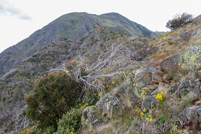 west-ridge-mount-buller