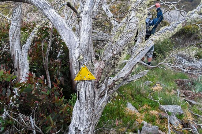 yellow-track-marker-mclaughlins-shoulder-mount-buller