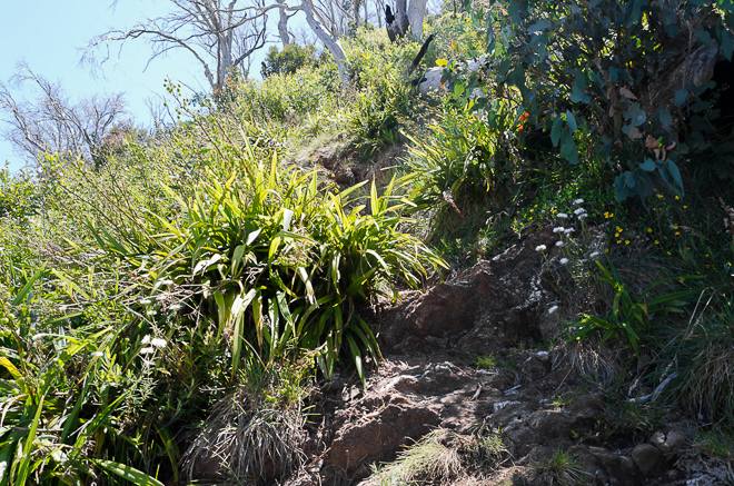 steep-climb-diamantina-sp