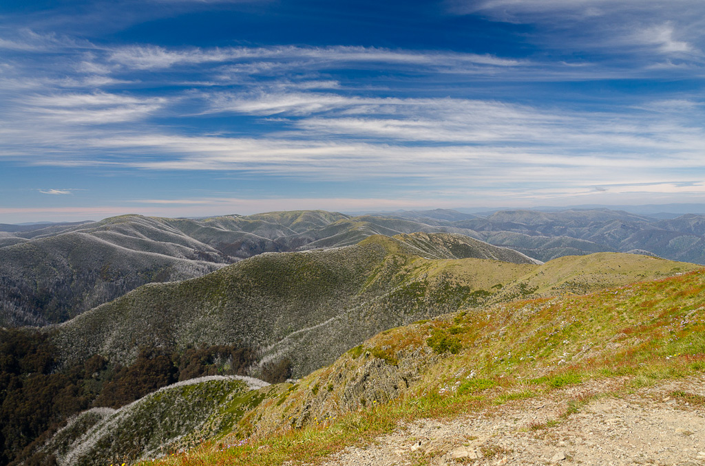 Diamantina-Spur-Razorback-from-Mt-Feathertop-summit