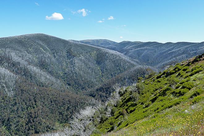 Diamantina Spur view