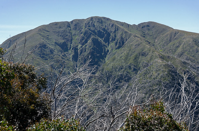 Mt Feathertop from Diamantina Spur