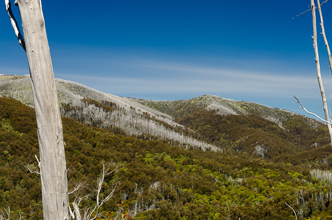 View from Diamantina Spur