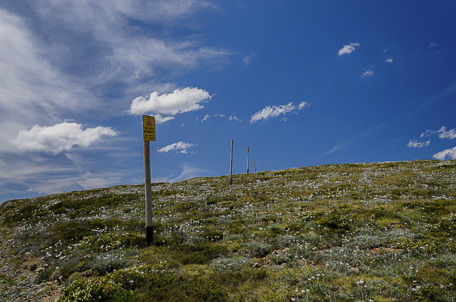 snow-poles-summer-mount-hotham