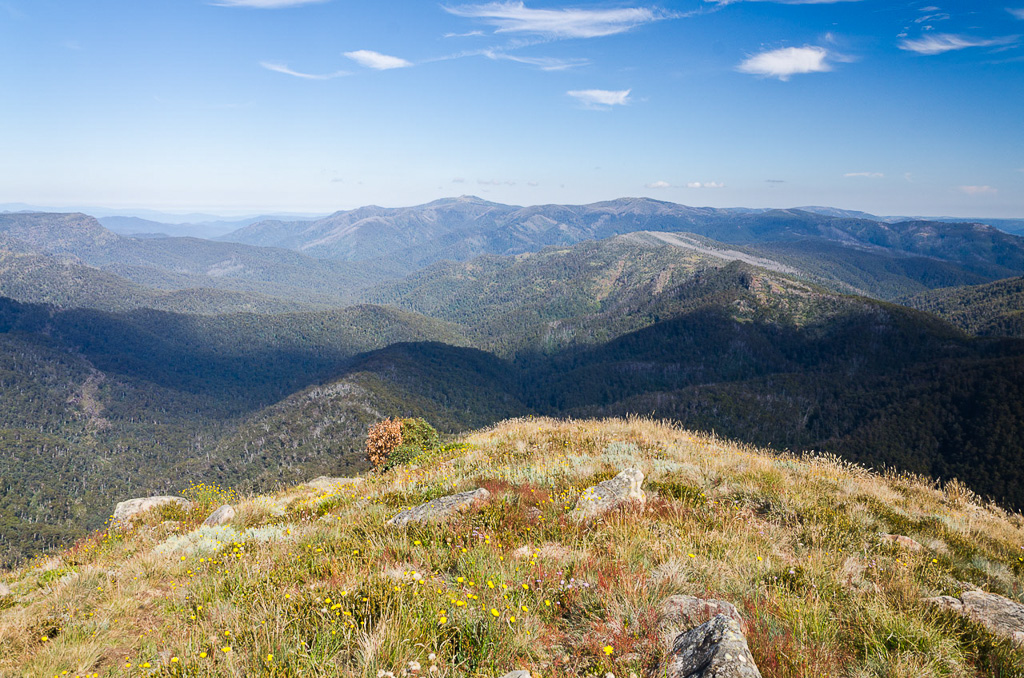 mt-buller-in-distance-from-howqua-feeder-track