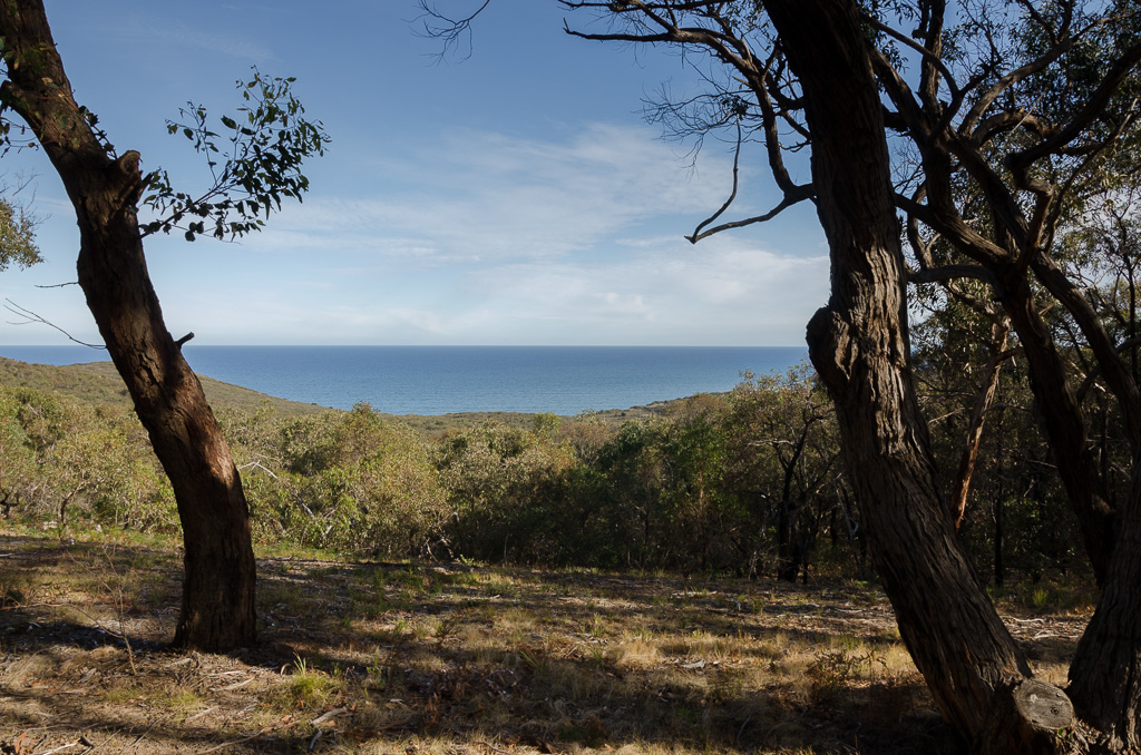 ocean-view-from-nature-trail