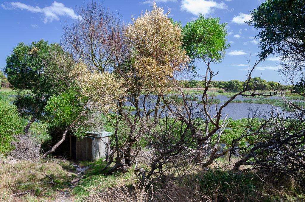 bird-hide-baxters-wetland