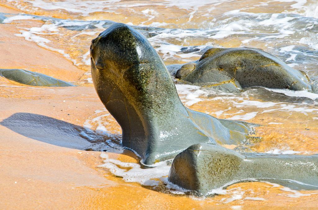 rocks-baxters-beach