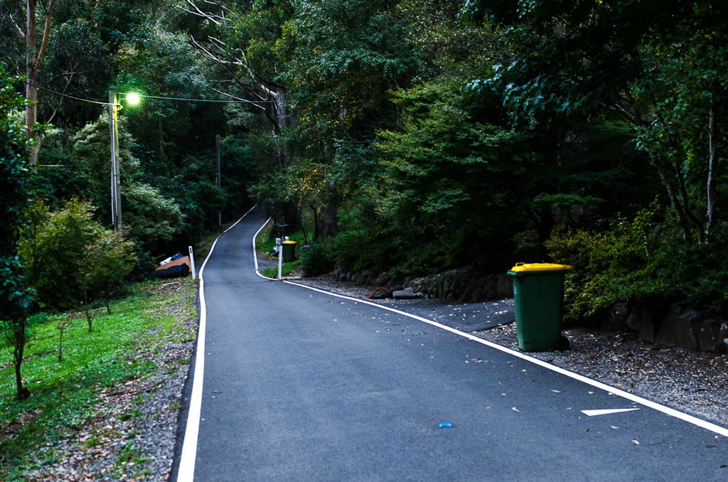 ridge-road-dandenongs