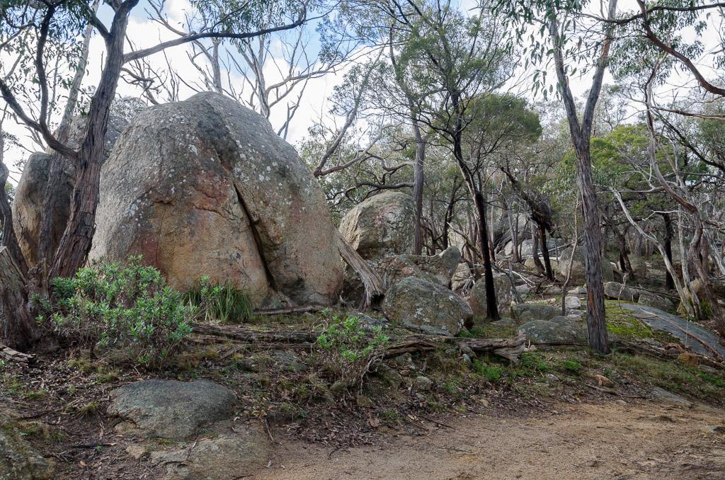 granite-boulders-near-easter-creek-track