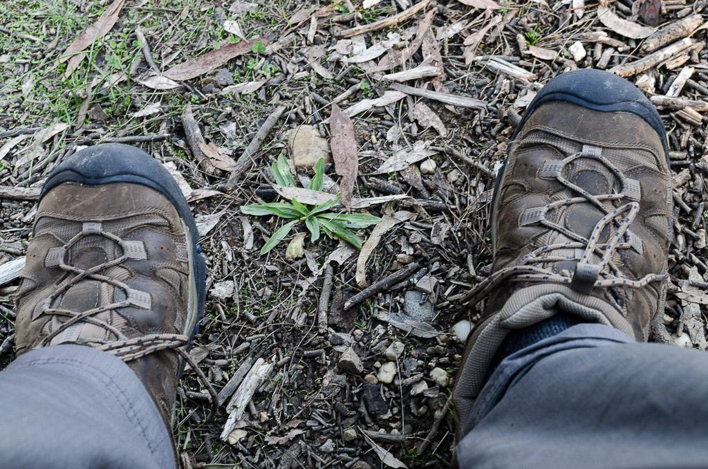 keen-siskiyou-shoes