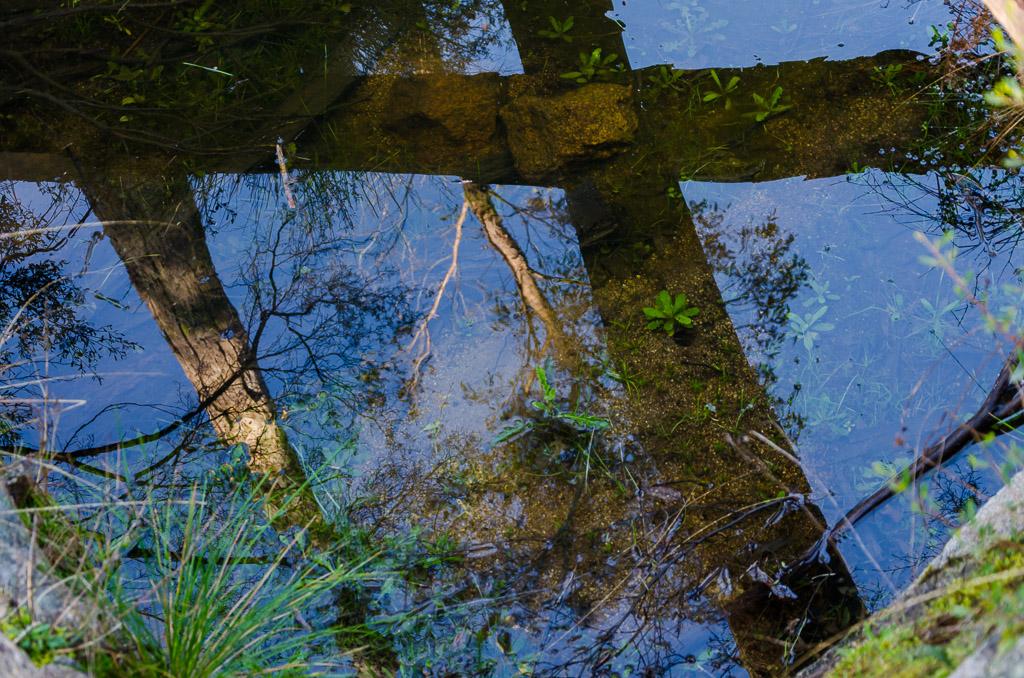 water-reflection-langi-ghiran-state-park