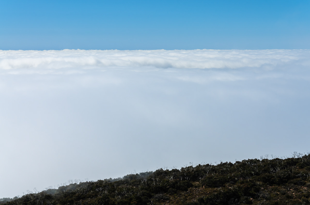 cloud-layer-near-mount-william-summit