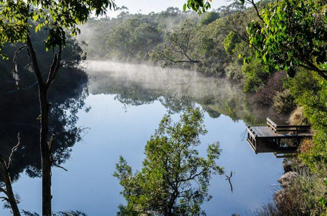 glenelg-river-moleside-camp