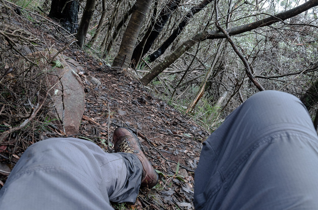 lying-on-the-ground