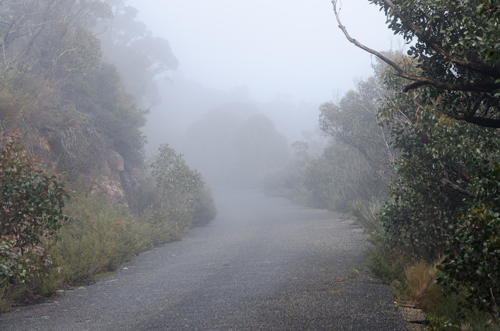 mist-on-road-mount-william