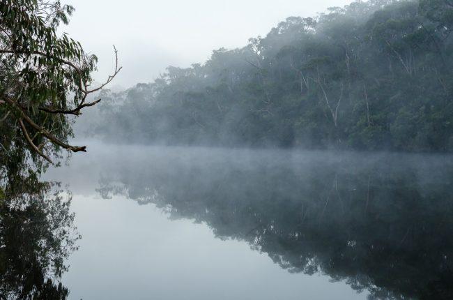 morning-mist-on-glenelg-river