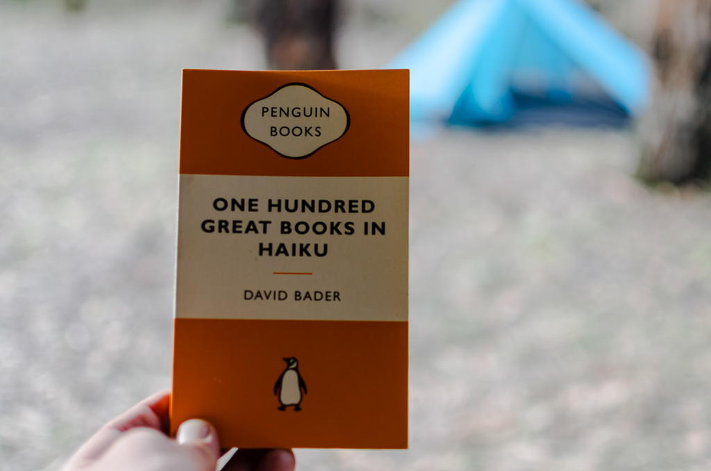 one-hundred-great-books-haiku-david-bader