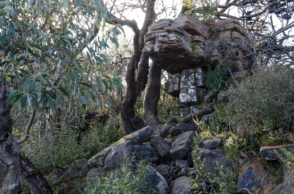 rocks-on-banksia-hill