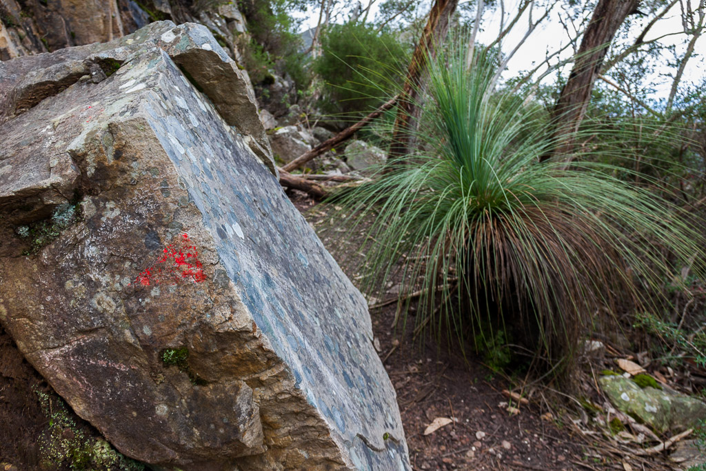 track-marker-painted-on-rock-mount-abrupt