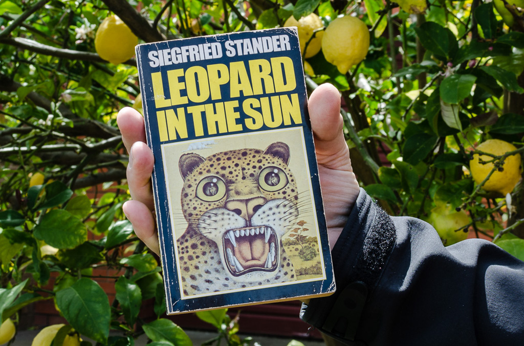 leopard-in-the-sun-siegfried-stander