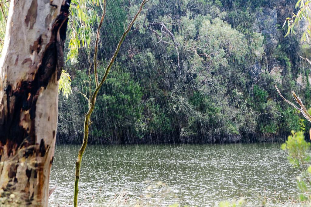 rain-falling-glenelg-river