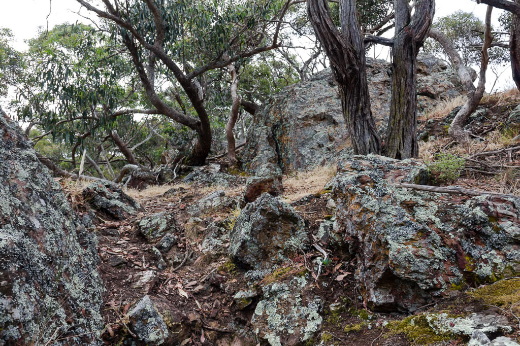 rocks-on-falcons-spur-werribee-gorge