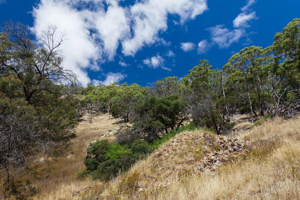 climbing-mount-beckworth