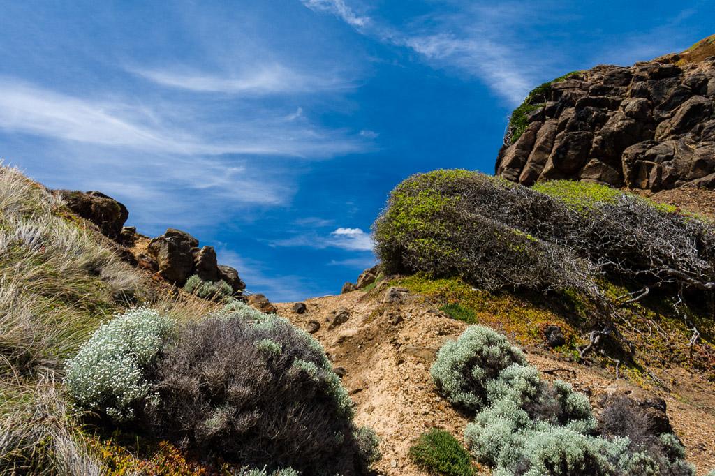 climbing-rock-outcrop-kitty-miller-bay