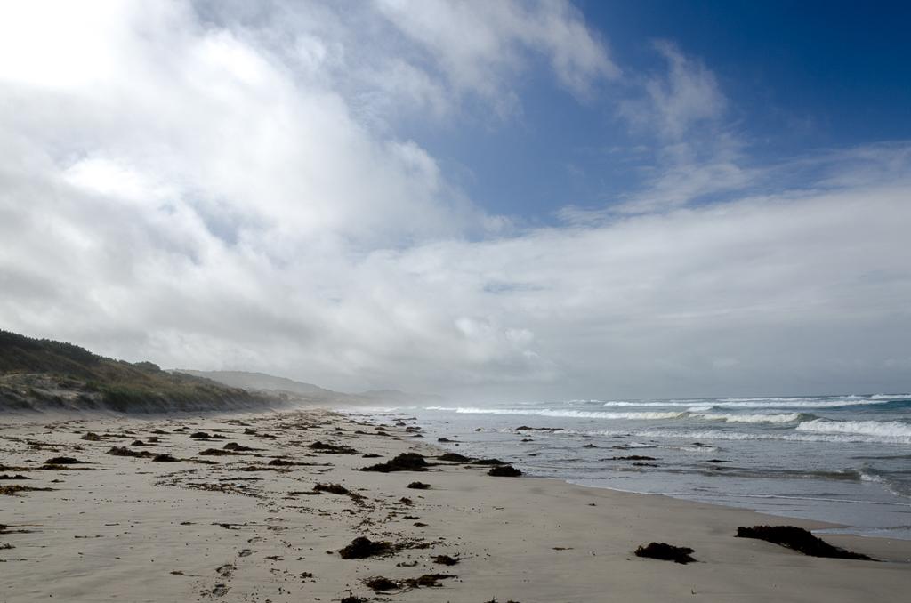 coastline-discovery-bay