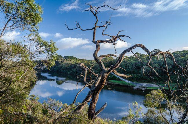 glenelg-river-great-south-west-walk