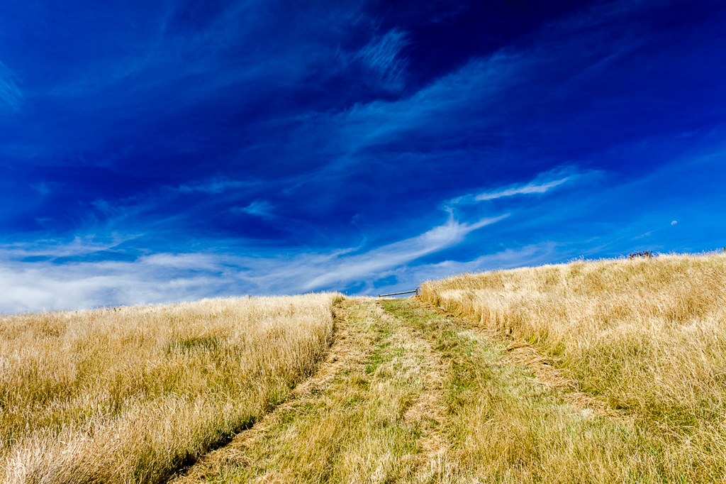 grass-path-helens-head-phillip-island