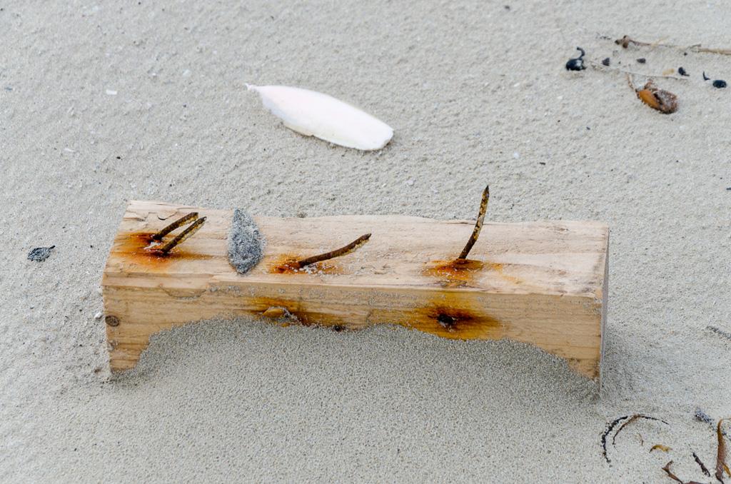 piece-timber-rusty-nails-beach