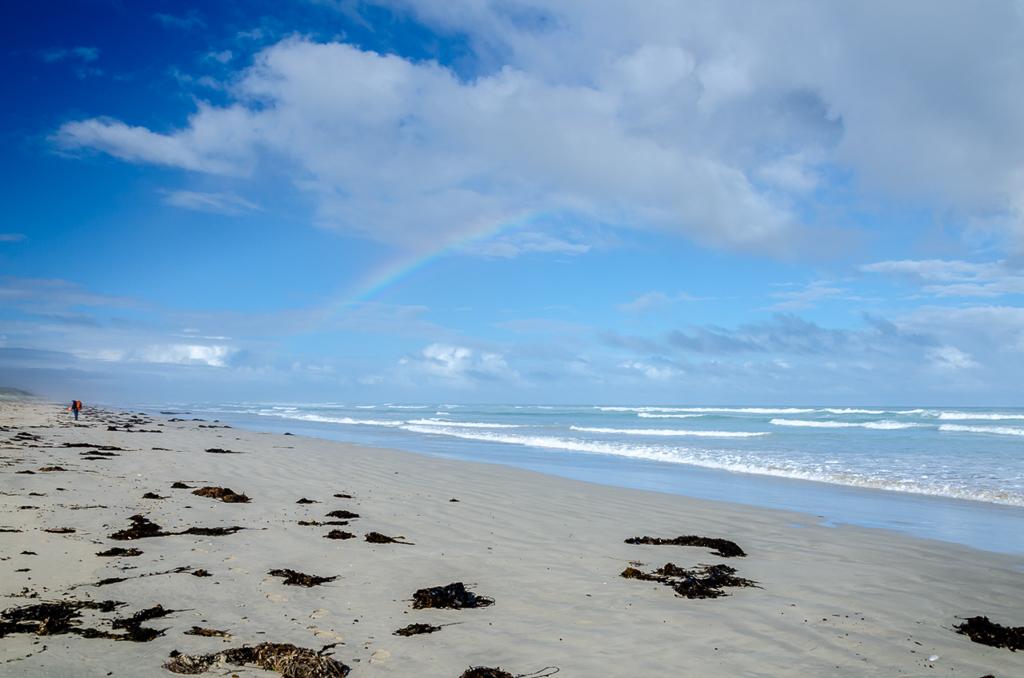 rainbow-above-beach