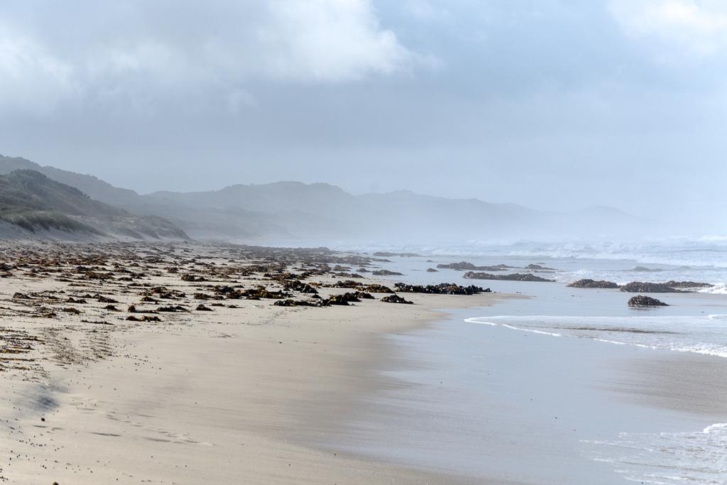sea-mist-above-beach
