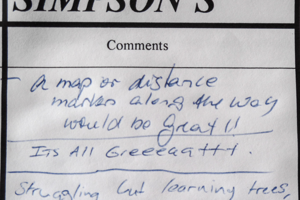 simpsons-camp-comments-book