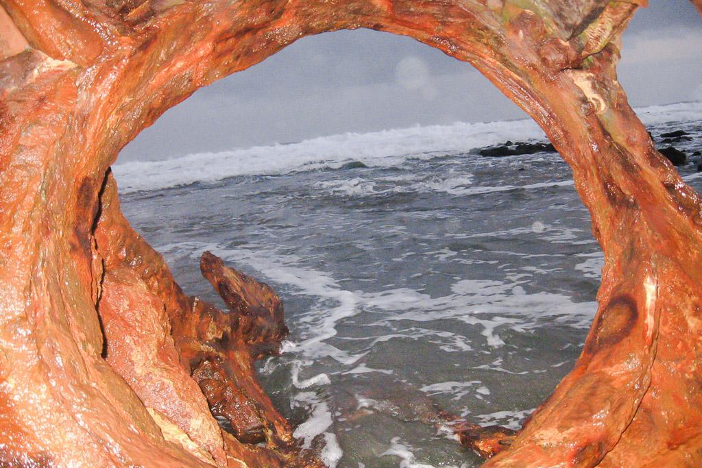 standing-on-speke-shipwreck-high-tide