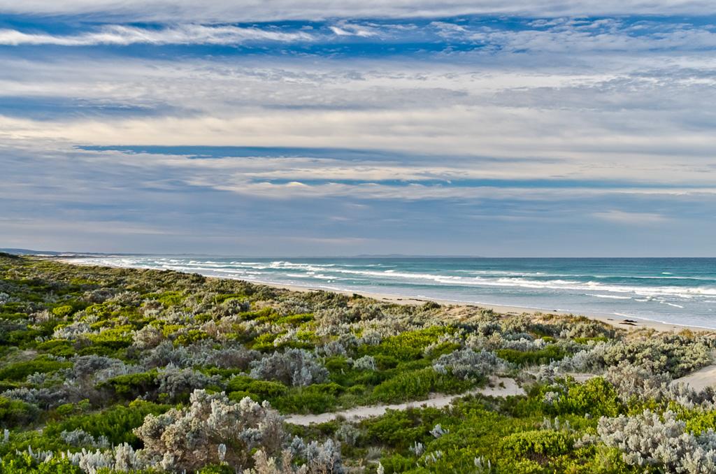 beach-at-discovery-bay-coastal-park