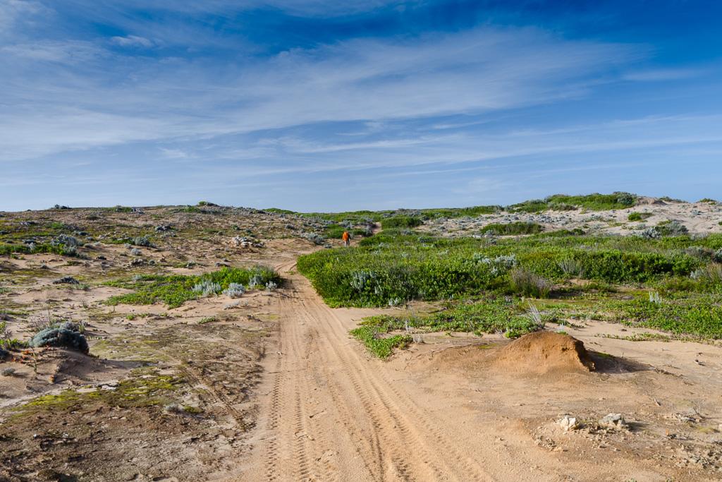 inland-track-discovery-bay-coastal-park