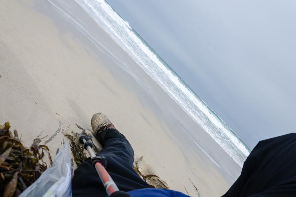 lying-on-seaweed