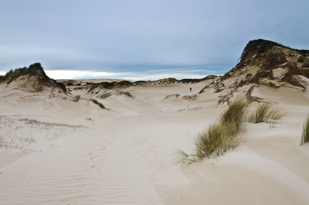 sand-dunes-near-swan-lake
